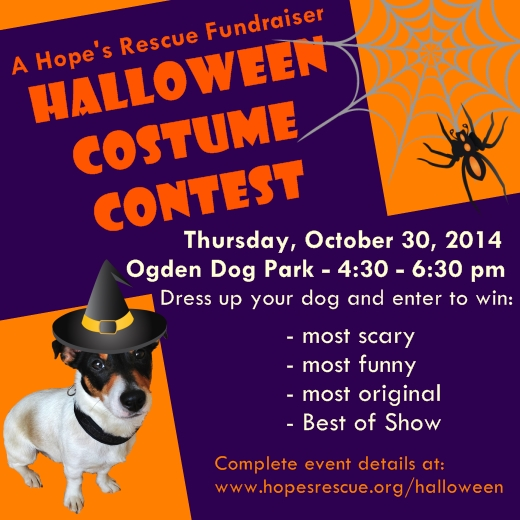 halloween dog costume contest hopes rescue